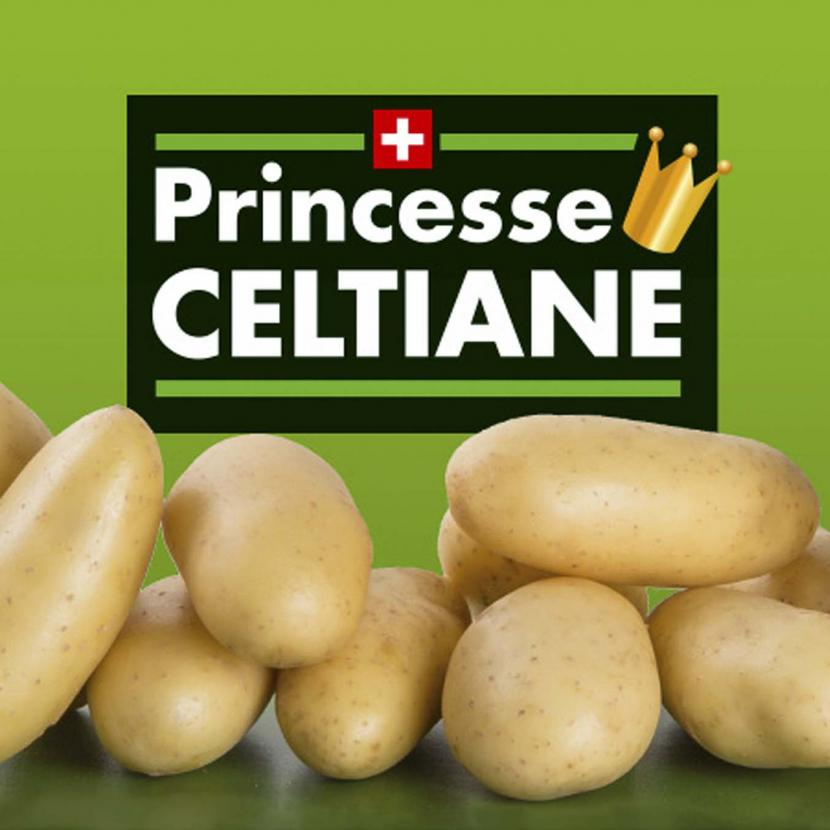 celtiane, coop, princesse celtiane, fenaco, frank, frankr, campagne, referencement, communication, agence, fribourg, SEA, media sociaux, bilingue